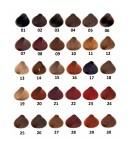 Farba Sanotint Classic 29 Dark Copper Blonde (Ciemny Miedziany Blond)